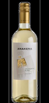 Anakena-Sauvignon-Blanc-B